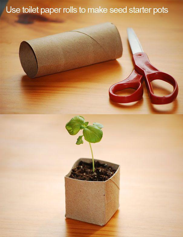 cardboard tube plantern